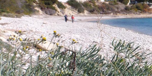 Playa del Barranc d.Aigües. El Campello.