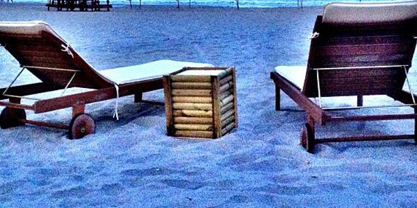 Oasis de palmeras en la Playa Muchavista