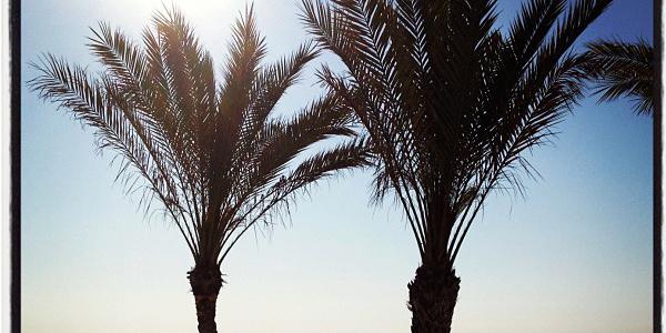 Amanece en la Playa Muchavista